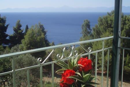 Studio with Sea View- Skopelos - Apartment