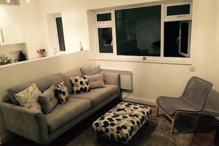 Convenient Spacious Flat - Appartement