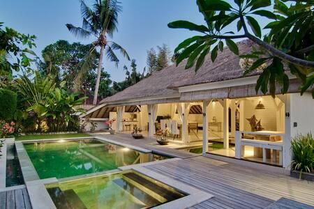 Unique Tropical Villa Canggu - North Kuta - Villa