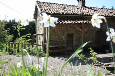 Gîte dans les bois de l'Auvergne - Maison