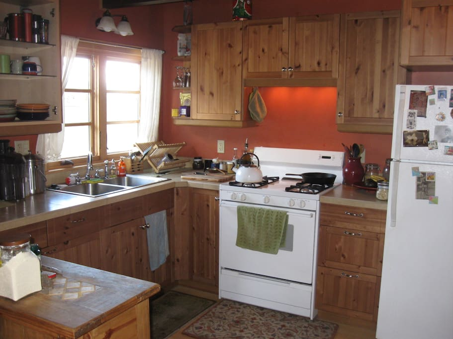 a modern kitchen with a gas cooking stove and all the amenities.