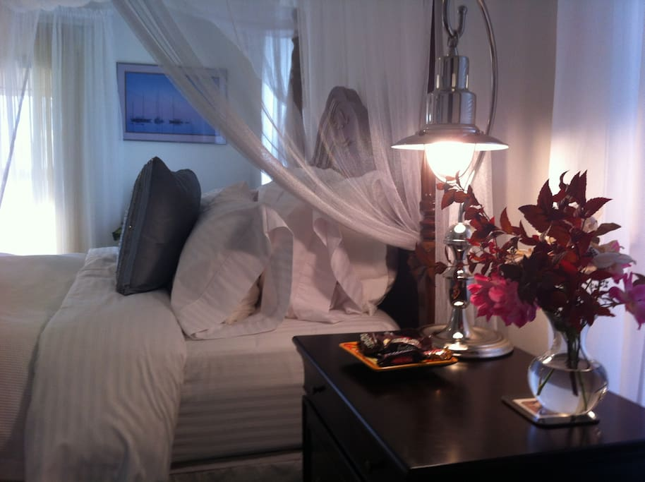 Spacious, tranquil,  private room with huge walk in closet and ensuite bathroom