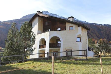 Apartment with private pool and spa - Samedan - Apartemen