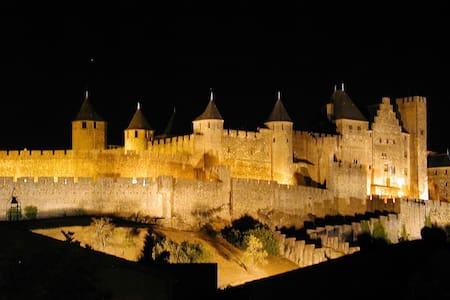 Carcassonne  centre, La Cité views!