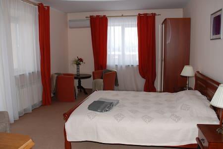 Просторные апартаменты с балконом - Vilnius