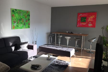 Chambre privée dans un apt quartier Saint-Louis - Appartement