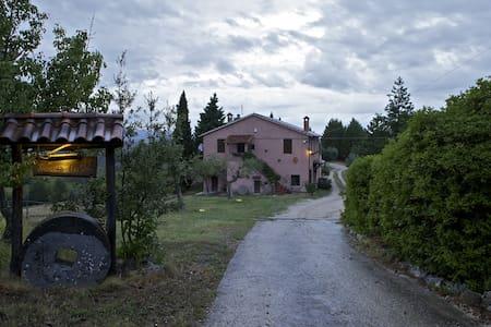 Casa Boschetto - San Venanzo - Villa