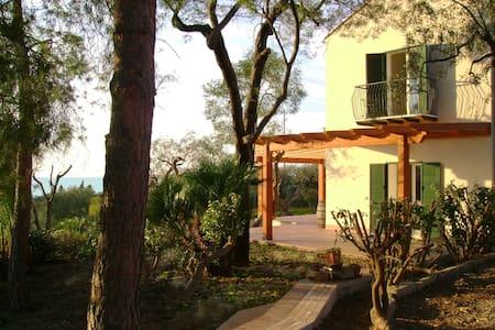 Flat To Rent Villa degli Ulivi (A2) - Apartemen
