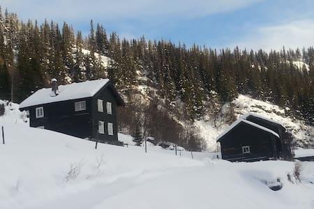 Telemark, Bondal-Old farmer place, - Blockhütte