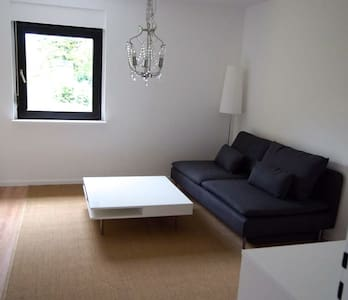 Spacious, newly renovated 2 Br apt.- Wü-Frauenland - Appartement