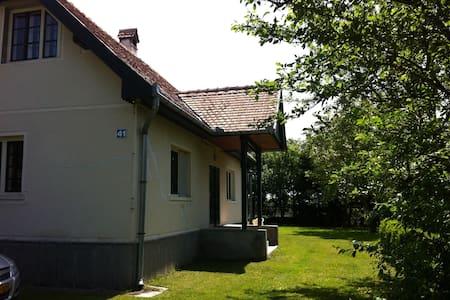 Lovely house Bita - Transylvania    - House