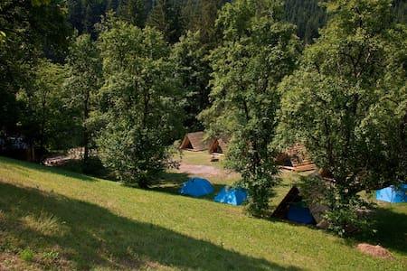 NaturPlac / Tent rental II. - Tent