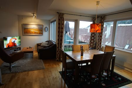 Central Penthouse Flat with parking