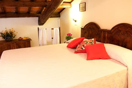 camera con soppalco in agriturismo - Bed & Breakfast
