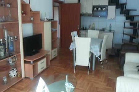 Entire appartment Pozarevac Center - Lakás