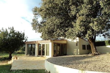 Landhuisje in Cervera del Maestre - Blockhütte