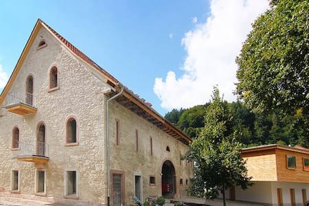 Apartment in the Old Barn - Schopfheim - Appartement