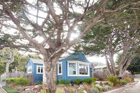 Blue House, Walk to Town and Beach! - 퍼시픽 그로브(Pacific Grove) - 단독주택