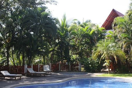 Jungle lodge, incredible landscaping, minutes from 3 fantastic beaches, cool pool / bar / restaurant / pizzeria, a/c, tv, great service, we take care of all your needs so you have a wonderful vacation