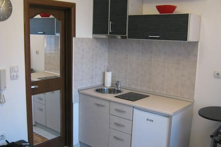 Great apartment in downtown Nis - Lakás
