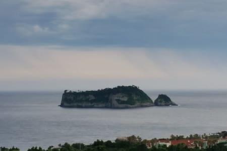isla Tigre - Seogwipo-si - Apartamento