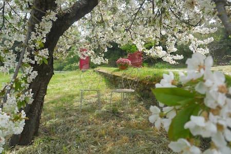 Lovely Country House in Umbria 2 - Poggio - Huoneisto