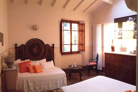 Camera in antica casa  in collina . - Pietrasanta - Bed & Breakfast