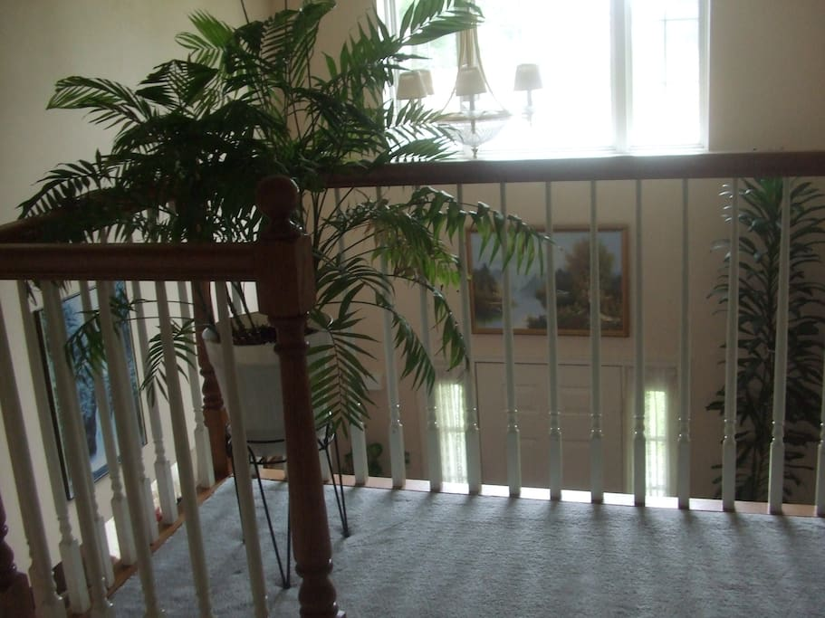 2nd Floor Banister and stair entrance