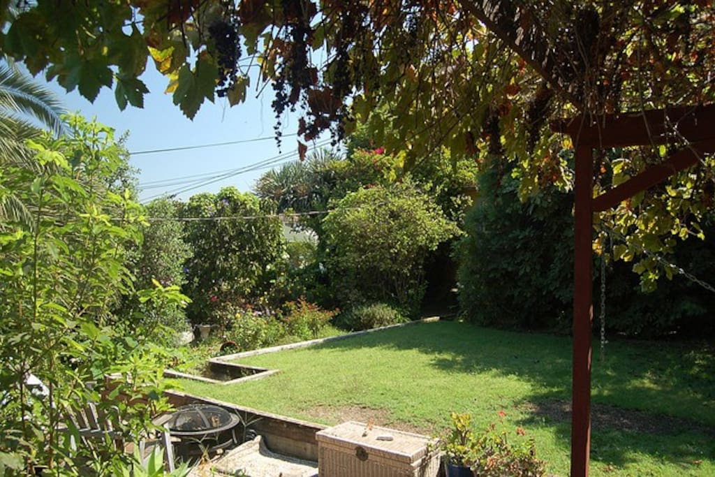 View of shared yard, firepit and rose garden, from front main house