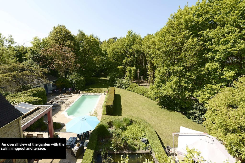 View from the loft: Our garden in the very green surroundings.