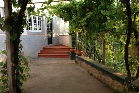 Serra da Estrela - Gouveia - Wohnung