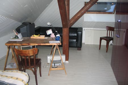Guestroom with TV for 1 person - Hechingen - Apartment