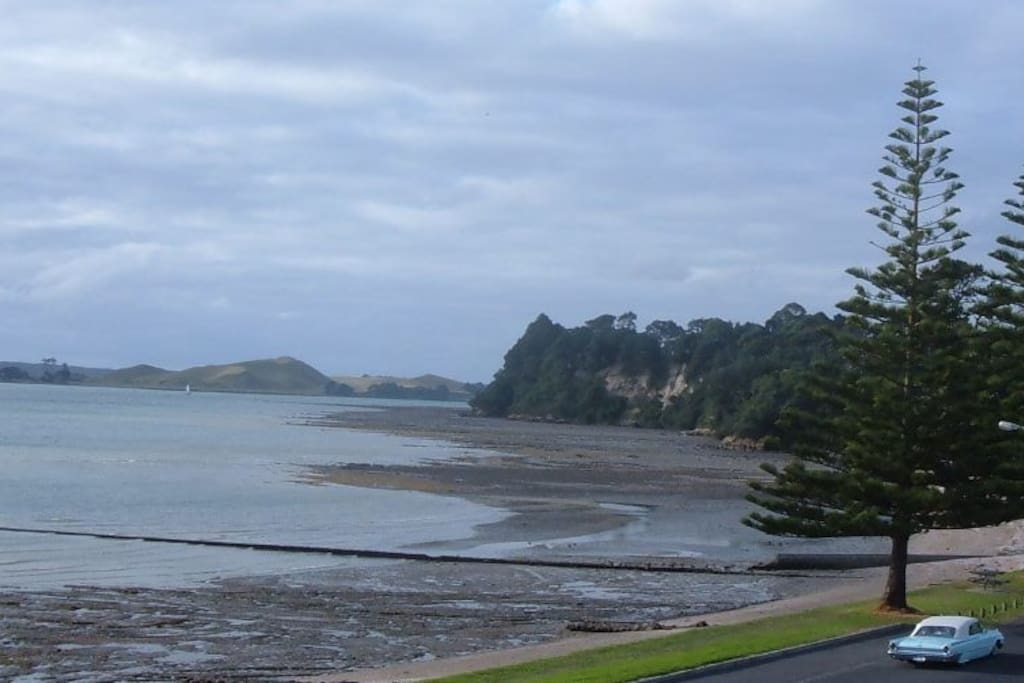 Browns Island and Musick Point at low tide on a winter morning mood