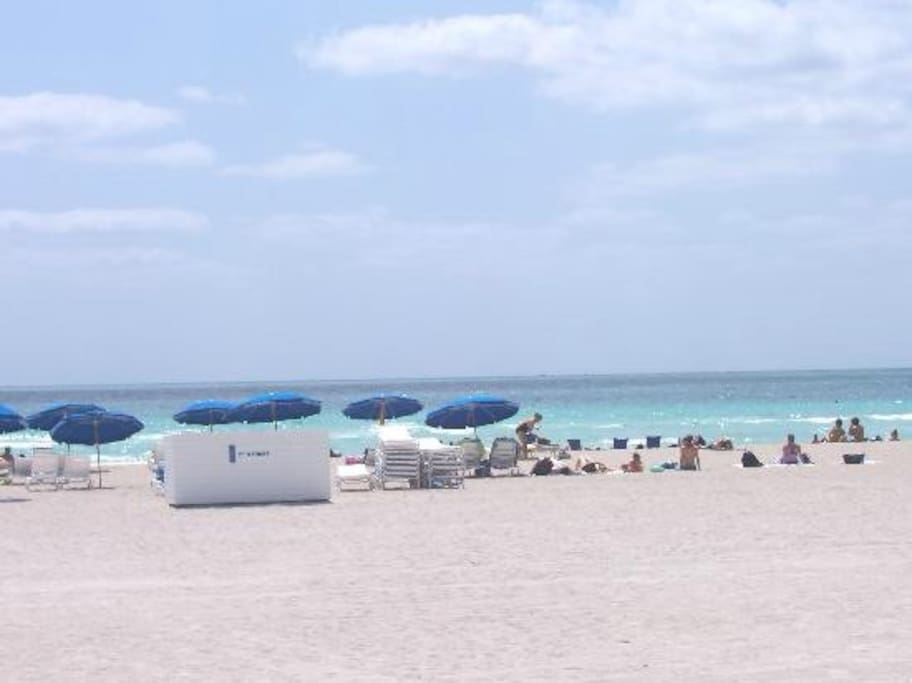 Sunny Isles Beach just across Collins Ave ️ walk here in 5 minutes
