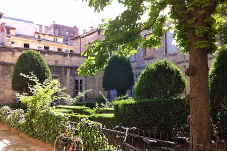"The room is spacious, luminous, ventilated, calm even though the building is in the historical heart of Montpellier, close to events and easy transportation. The flat is in a wonderfull ""hôtel particulier"" of XVIIe century with arboreal courtyard"