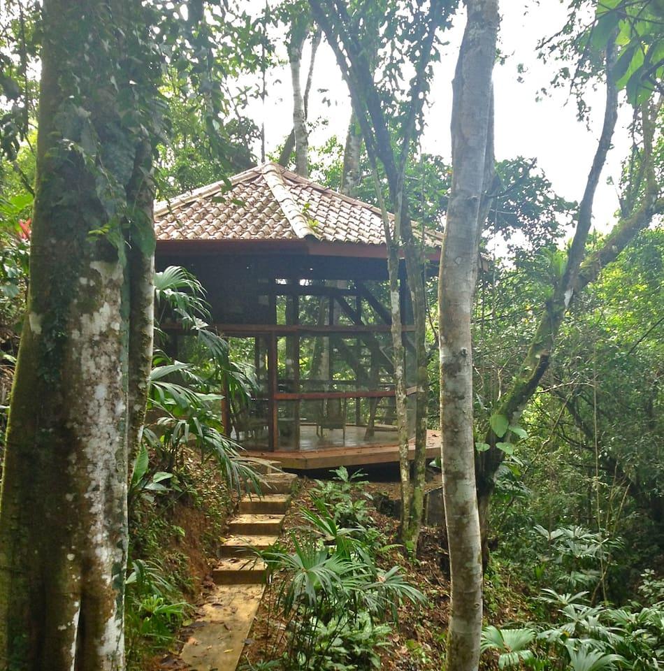 Waterfall Villa Jungle Retreat