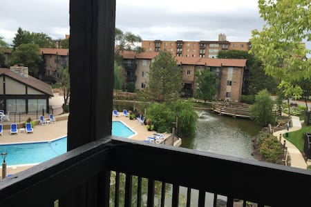 Beautiful updated apartment. - Mount Prospect