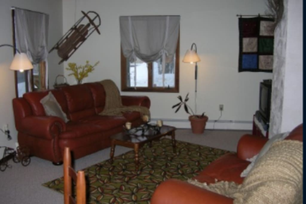 Comfy open concept living room/dining room with plenty of creature comforts while you're away.