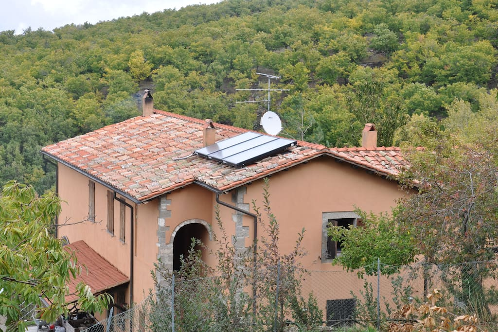 The Entire Building located in chestnuts forest Amiata Tuscany
