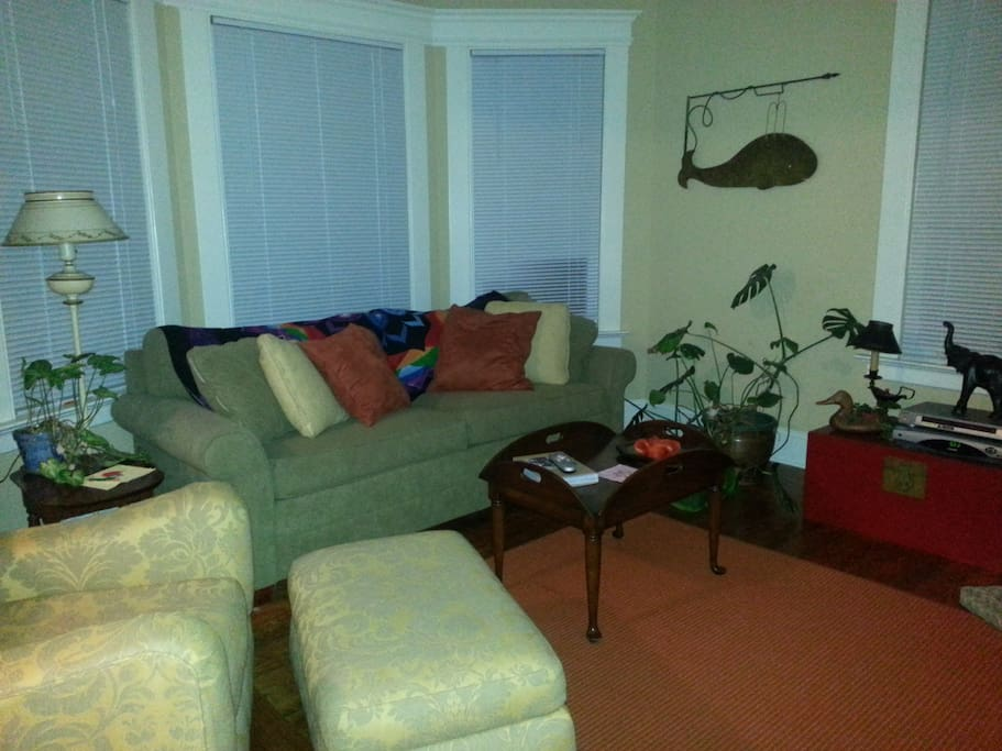 Living room with fold out queen sleeper sofa.