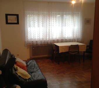 Gemütliche Einzimmer Wohnung - Marburg - Appartement