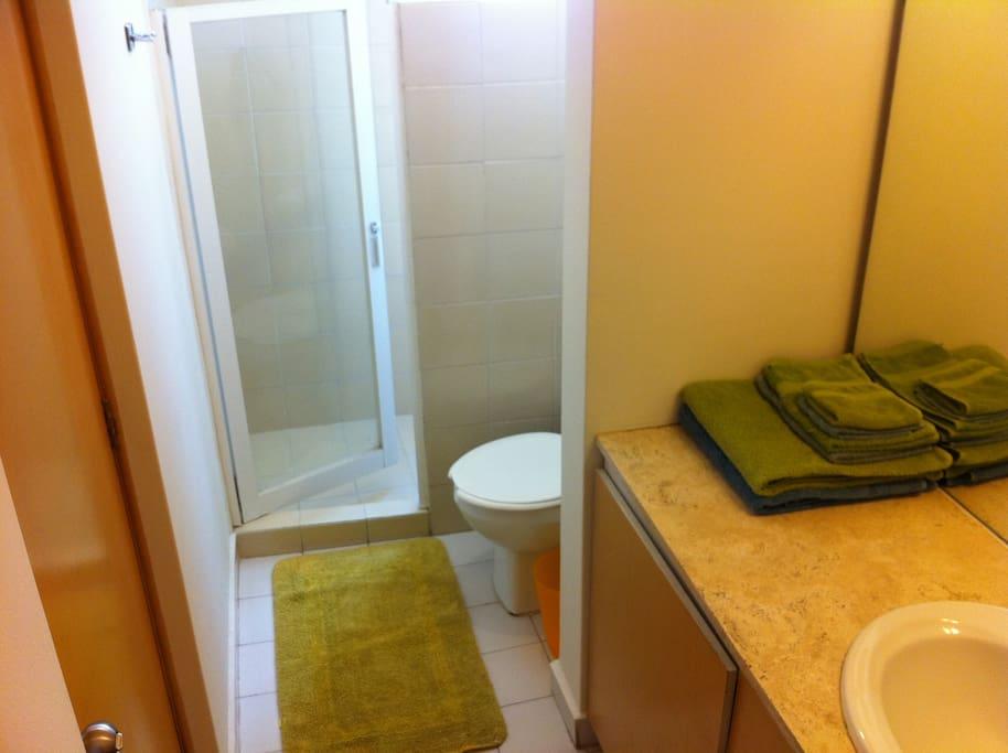 Bathroom, with shower and huge mirror.  El baño: con regadera y enorme espejo;