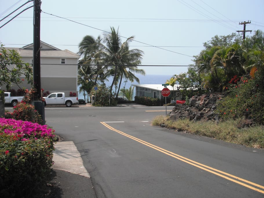 View of street from Palm Hale.