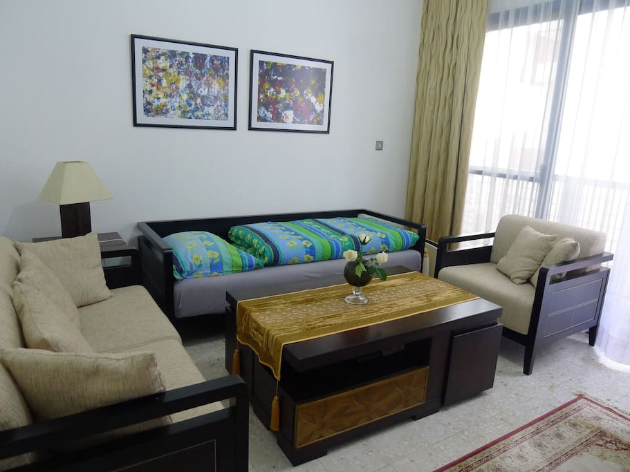 small livingroom/bedroom
