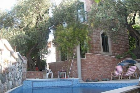 Levantin Inn 1/2room with balcony 1 - Appartamento