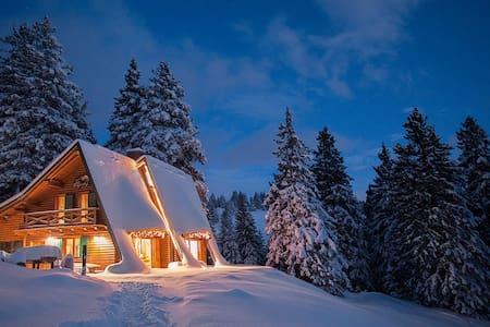 Alpine Chalet at Ski Resort 1900m