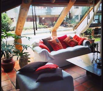Dreamland Beachfront Deck Studio - Apartment