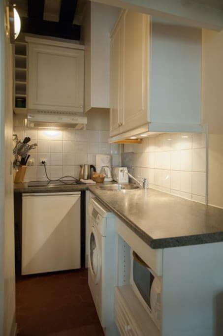 Compact but well equipped kitchen with combo washer/dryer