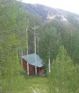 Mountain Log Home On Private 14 Acres - Battlement Mesa - House