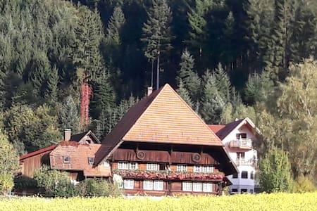 Ferienwohnung Bühlerstein - Gutach (Schwarzwaldbahn) - Appartement